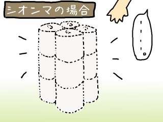 シオンマの場合.jpg